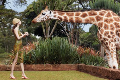 Giraffe-Manor-2-620x413