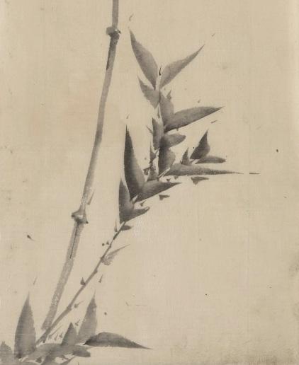 HokusaiBamboo copy